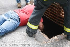 Chief LeRoy reaches in to remove the yearling from the storm drain